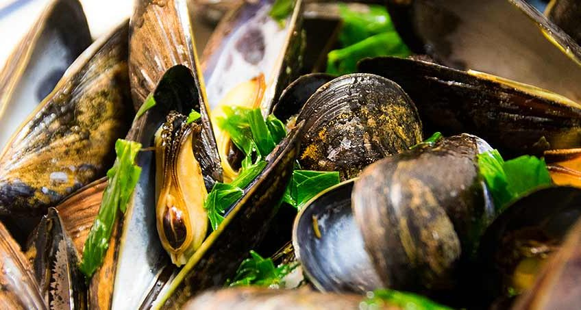 geed-friendly mussels